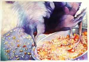 Korunáč,akvarel 2014,36x52cm