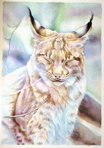 Rys,akvarel 2014,36x52cm