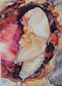 Larvička/, 2016, akvarel na ručním papíru, 56x76cm